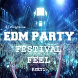 EDM Festival feel  vol.1 - DJ Migraine