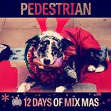 12 Days of Mix Mas: Day Twelve - Pedestrian