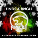 FIRECAT 451 - Tings A Jingle (Reggae Inspired DnB)