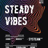 Steady Vibes 002 @stedingu maja 2019-02-08