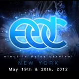 Markus Schulz - Live at Electric Daisy Carnival in New York (19.05.2012)
