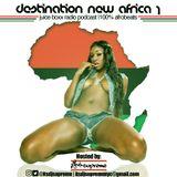 Destination New Africa