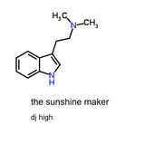 The Sunshine Maker
