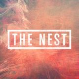 Kiwi live in The Nest - 4 hour set