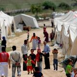 Should Australia take more refugees?