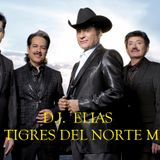 DJ ELIAS - Los Tigres Del Norte Mix
