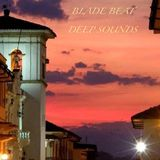HOUSE & DEEP SOUNDS INSPIRATIONS BY BLADE BEAT (09-07-16) .mp3