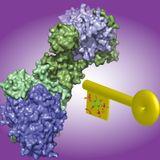 Enzyme Catalysis DarkPsy HiTech DJ Set