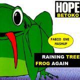 Hope vs Betoko - Its Raining Tree Frog Again [Fabio Ene Live Mashup]