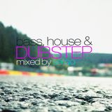 Bass, House and Dubstep Party Mix by Sergo