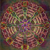 Spiral Orbit