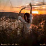 Summer Licks - July 2019
