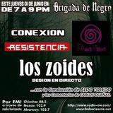 Brigada junto a Los Zoides, Conexión RM, Alex Resistencia y Cris Resistencia y Efecto Violeta