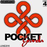 Pocket Granola 2016