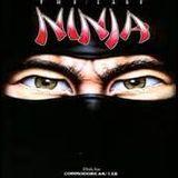 The Last Ninja Remixes