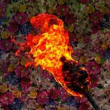 Remniqe - wildfire.mix