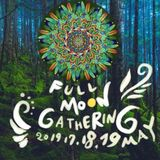 taisouegao ambient mix Full Moon Gathering~原生林の満月祭~18.5.2019