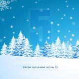 VA - Your winter night 5