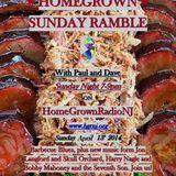 Homegrown Sunday Ramble #15 New music from Jon Langford+Skull Orchard, Harry Nagle and Bobby Mahoney