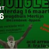 Rumble in the Jungle 2013 (LIVE) | J.H. Merlijn