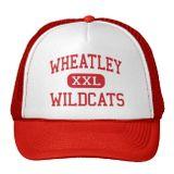 1980s_wildcats_gone_wild