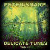 Dj Splash (Peter Sharp) - Delicate tunes vol.36 2018