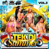 TEK DI SUMMER VOL.3 - 2014 MIXTAPE (DJ FEARLESS & WILDCAT SOUND)