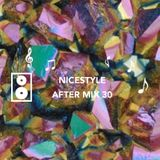 NICESTYLE  |  AFTER MIX  3 0