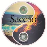 Saccao - Promo Mix [07.13]