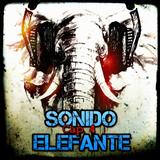 SONIDO ELEFANTE Cap.4