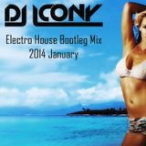 Electro House Bootleg Mix 2014 January || DJ ICONY