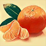 Grapefruit oder Klemmentin