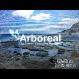 Arboreal Presents: Palm Oil #31 - Distant Shores 6