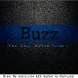 m.u.l.e. musiq presents Buzz: The Lost Mixes - Volume 1