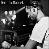Garrillo Dansek March promo mix 2013