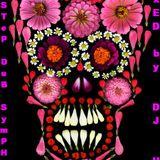 PopSTeP DuB SymPHoNy (Dec 09) - DJ UMB