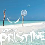 hofer66 - pristine - live at ibiza global radio - 161121