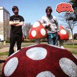 Magic Mushroom Mix