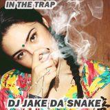 In the trap DJ jake da snake (soulection)