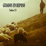 Serie: Guiados En Reposo | Parte 1: ¡Déjate Pastorear!