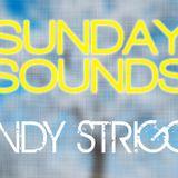 SUNDAY SOUNDS [27.01.2013]