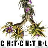 Chaotic Neutral w/ Django Voris 7/29/17 littlewaterradio.com