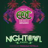 Night Owl Radio 077: Road to EDC Mexico 2017 Mega-Mix