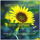 Guido's Lounge Cafe Broadcast 0260 Little Sunflower (20170224)