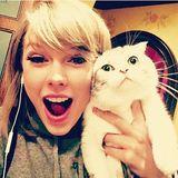 SWIFTY--Taylor Swift Megamix--Wedding Present for my Wife
