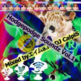 Hodgepodge Soundz vol.1(BASS MUSIC MIX)