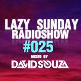 Lazy Sunday Radioshow #025 mixed by David Souza