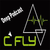 C Fly DeepTech Podcast
