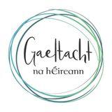 Údarás na Gaeltachta in 2019;  Foclóir Gaeilge-Gaeilge agus Fleadh Fhine Gall 2019- Near FM (5.9.19)