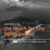 Palindrone - Liveset - TheBeachForCityLiving - 030604